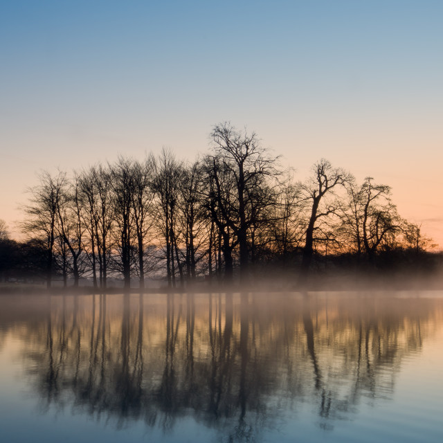 """""""A Winters Morning"""" stock image"""