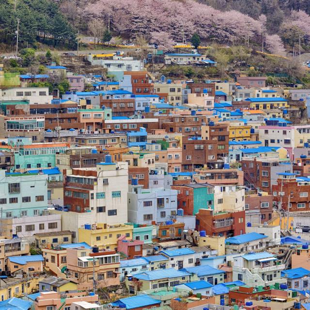 """Gamcheon Culture Village"" stock image"