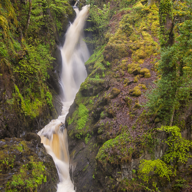 """Aira Force"" stock image"