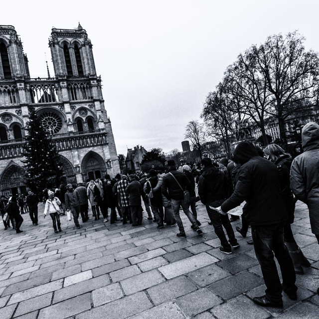 """Notre Dame Cathedral"" stock image"