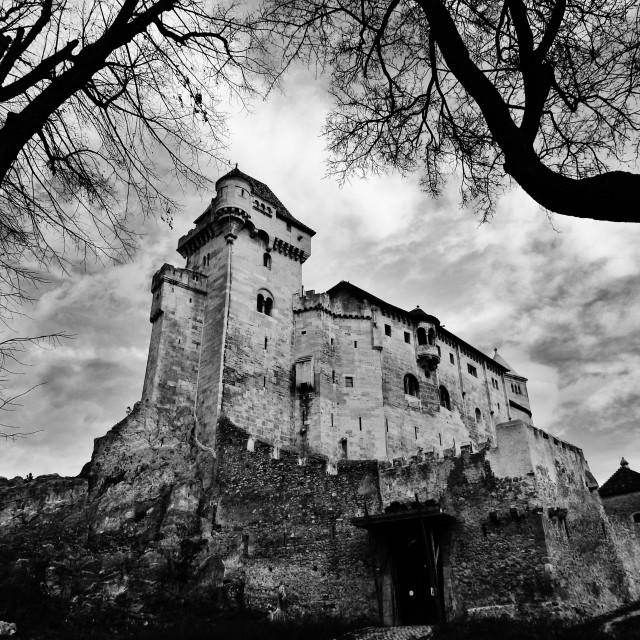 """""""Liechtenstein Castle"""" stock image"""
