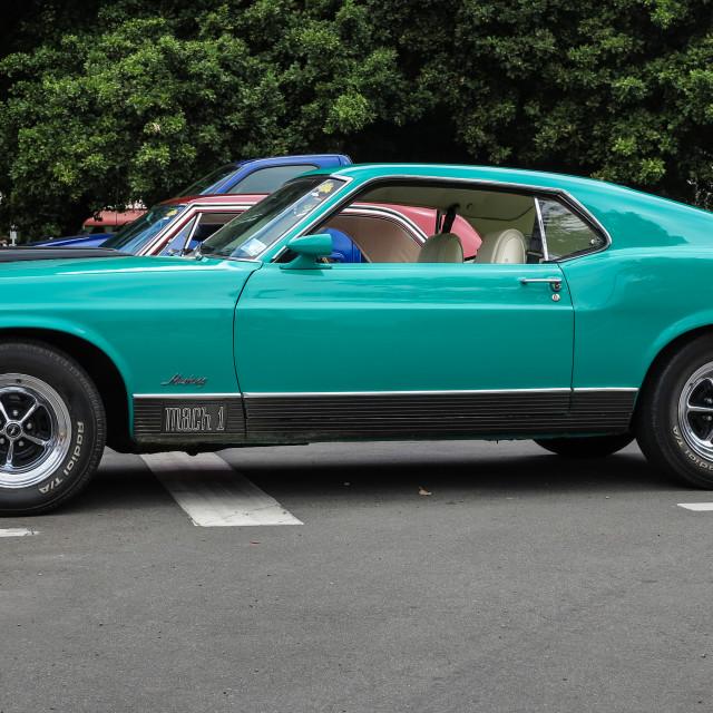 """Mustang Mach 1"" stock image"