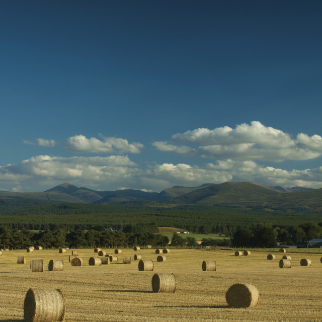 """The Cairngorms"" stock image"