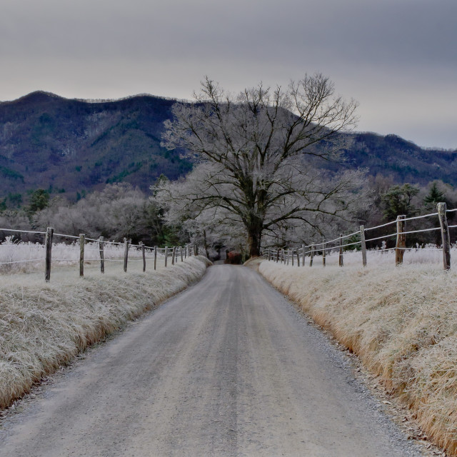 """Cades Cove"" stock image"