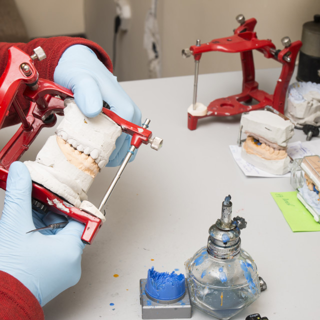 """Dental technician showing tooth dentures"" stock image"