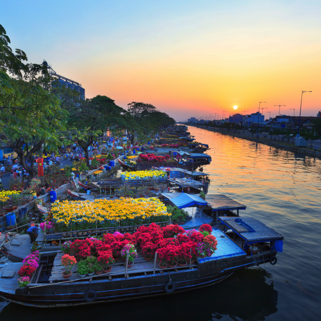 """boating along canal carry flowers with apricot, confetti, almond tree to sell everyone distillation welcome spring Tet in Ho Chi Minh City"" stock image"