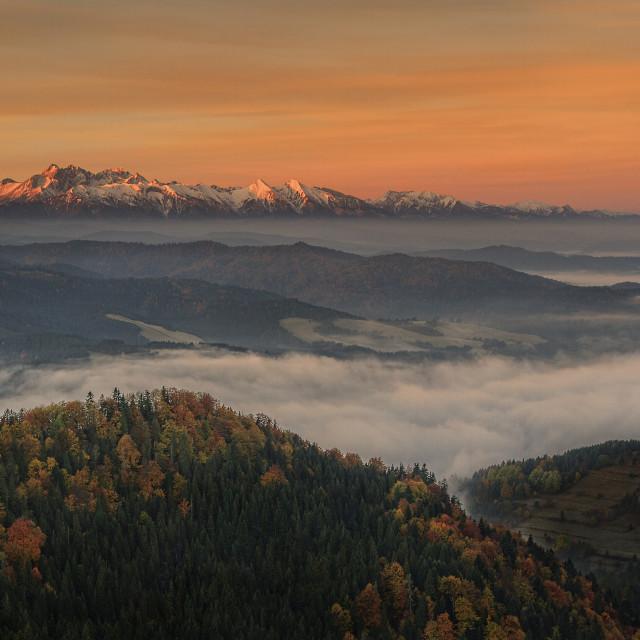 """Morning in Pieniny"" stock image"
