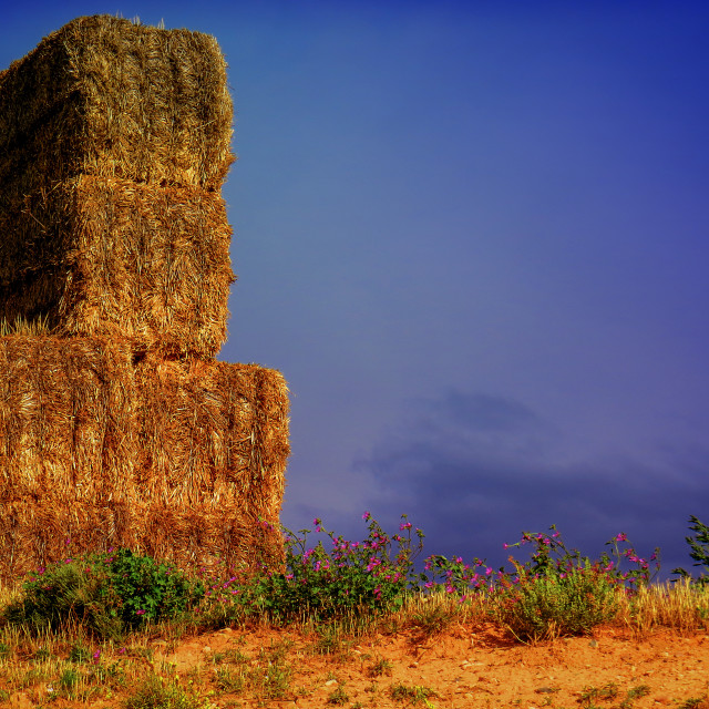 """Hay stacks in Spain"" stock image"
