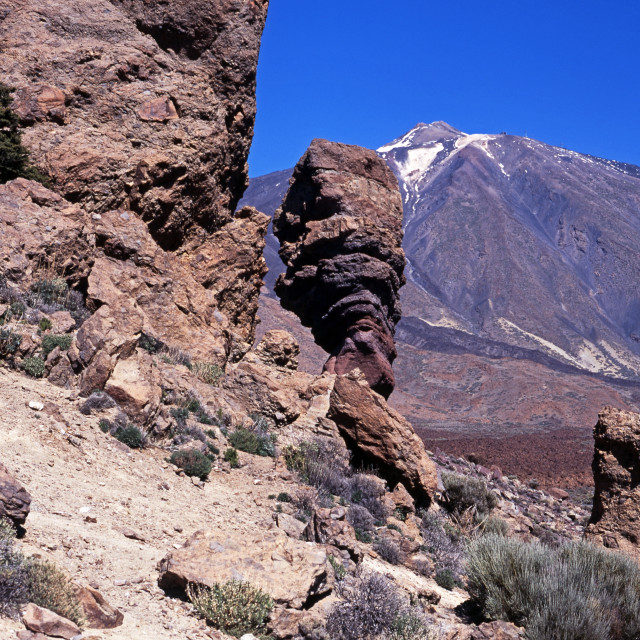 """Las Canadas National Park, Tenerife"" stock image"