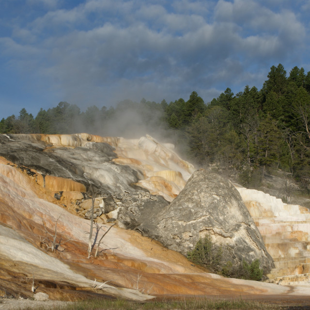 """Mineral Terrace's in Yellowstone"" stock image"