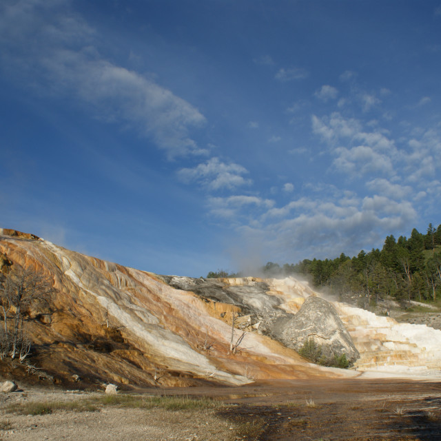 """""""Mineral Terrace's in Yellowstone National Park"""" stock image"""