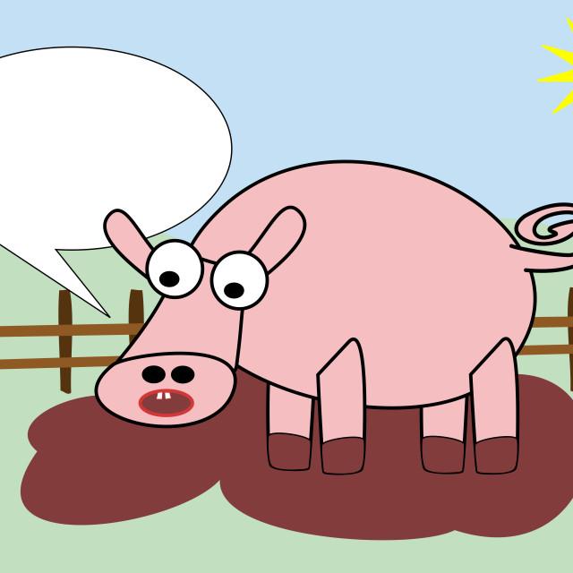 """pig in mud"" stock image"