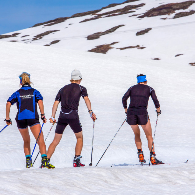 """""""Training for winter"""" stock image"""