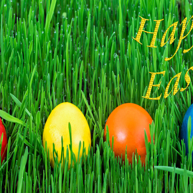 """Happy Easter - Easter eggs in the grass"" stock image"