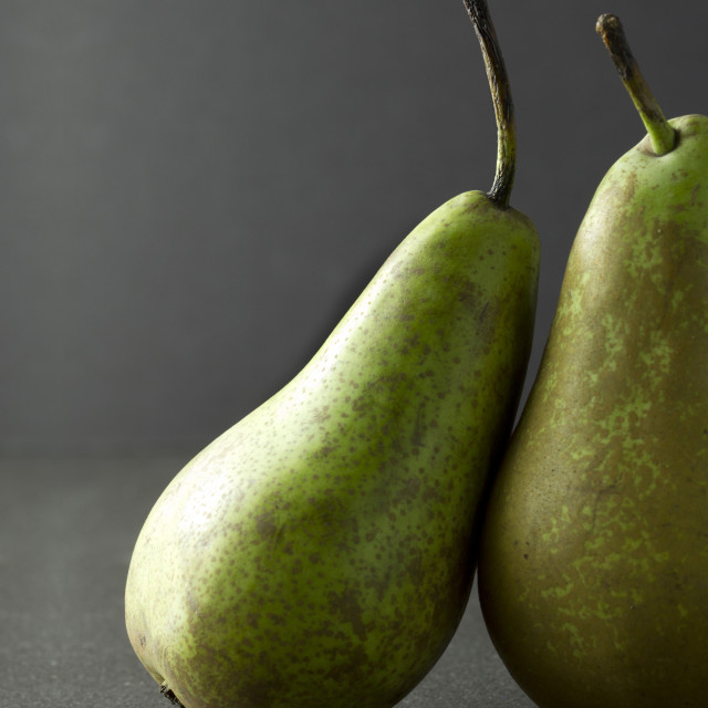 """Two pear on a dark background one resting on the other"" stock image"