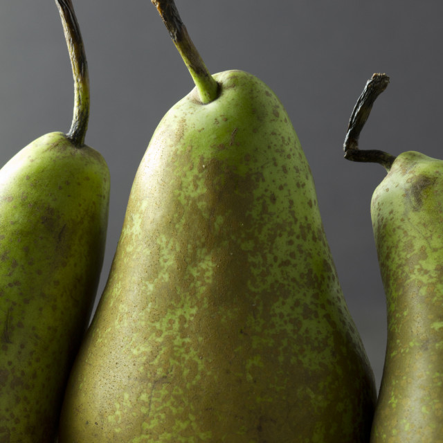 """A trio of green pears on a dark background"" stock image"