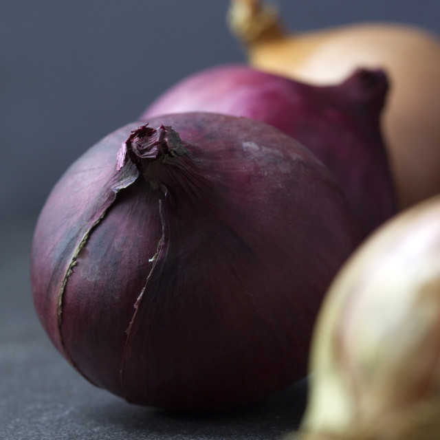 """Red and white onions on a dark backgroun"" stock image"