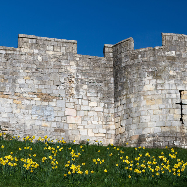 """Castle/city wall"" stock image"