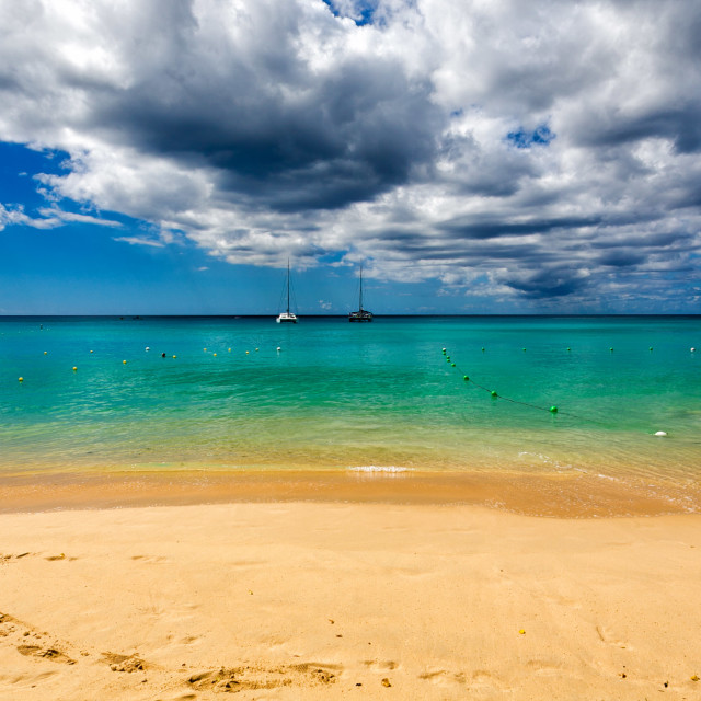 """Sandy Lane Beach, Barbados"" stock image"