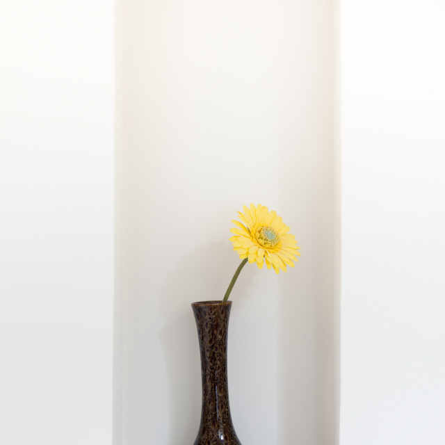 """Yellow flower in vase"" stock image"