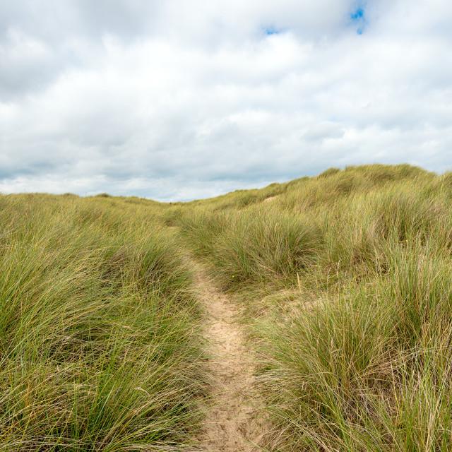 """""""Dunes at Winterton on Sea"""" stock image"""