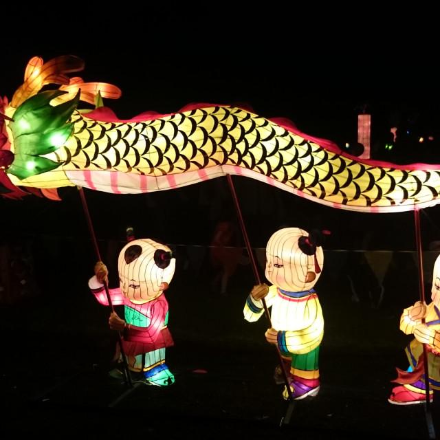 """Dragon Handmade Chinese Lantern"" stock image"