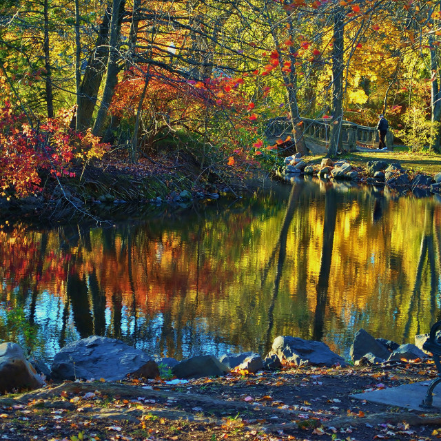 """Autumn Color Reflections"" stock image"