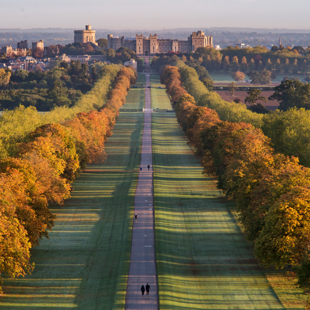 """Looking down the Long Walk towards Windsor Castle"" stock image"
