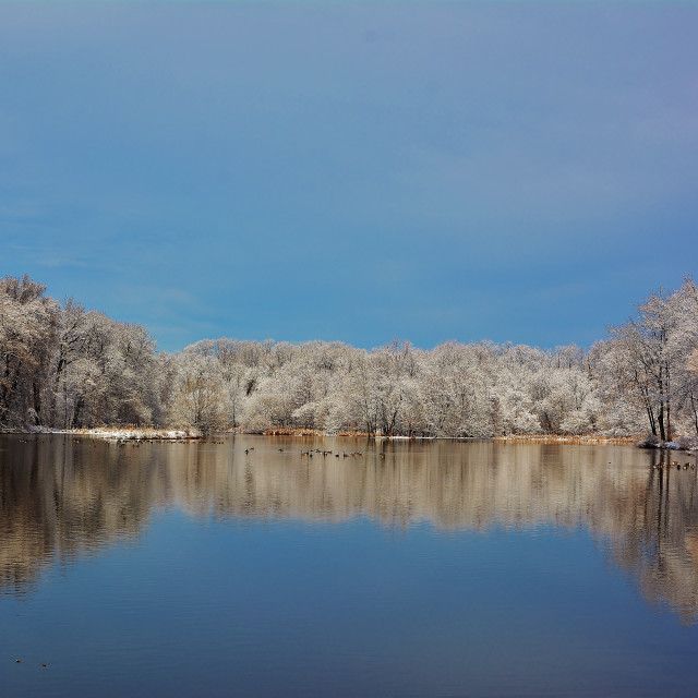 """Winter lake landscape"" stock image"