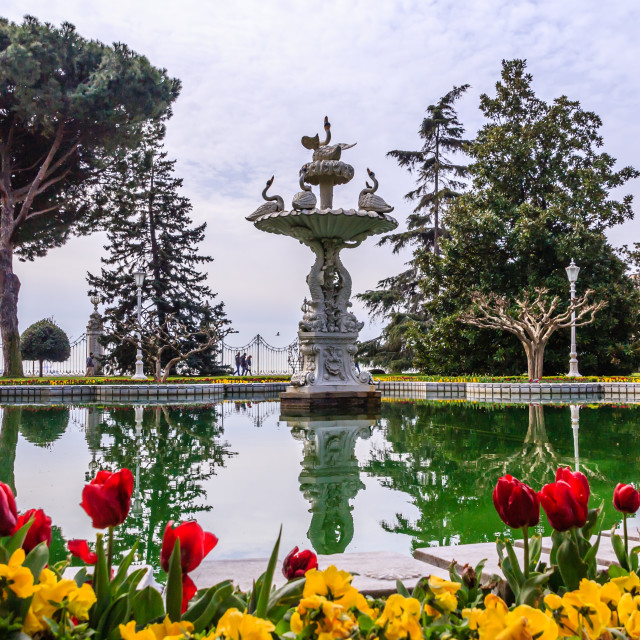 """Fountain in Dolmabahce palace gardens"" stock image"