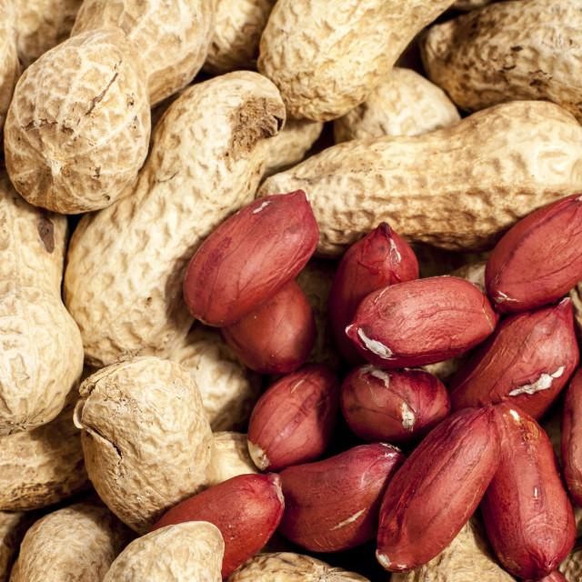 """""""Monkey nuts"""" stock image"""