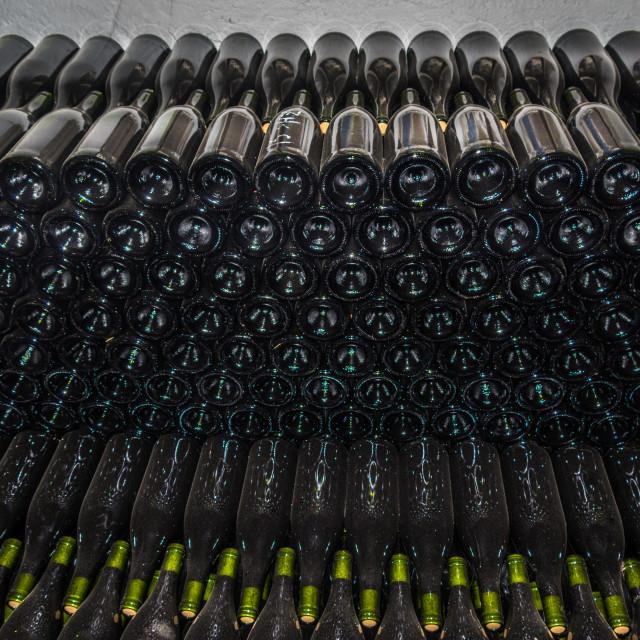 """Wine maturing in bottles"" stock image"