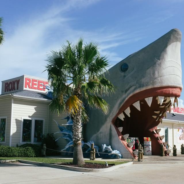 """Big shark shop"" stock image"