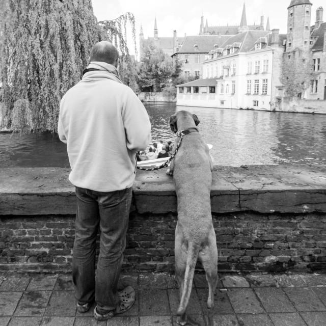 """Man and dog peeping"" stock image"
