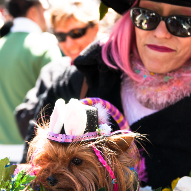 """""""Easter parade NYC"""" stock image"""