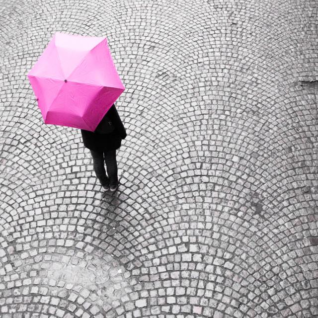 """""""Magenta Umbrella"""" stock image"""