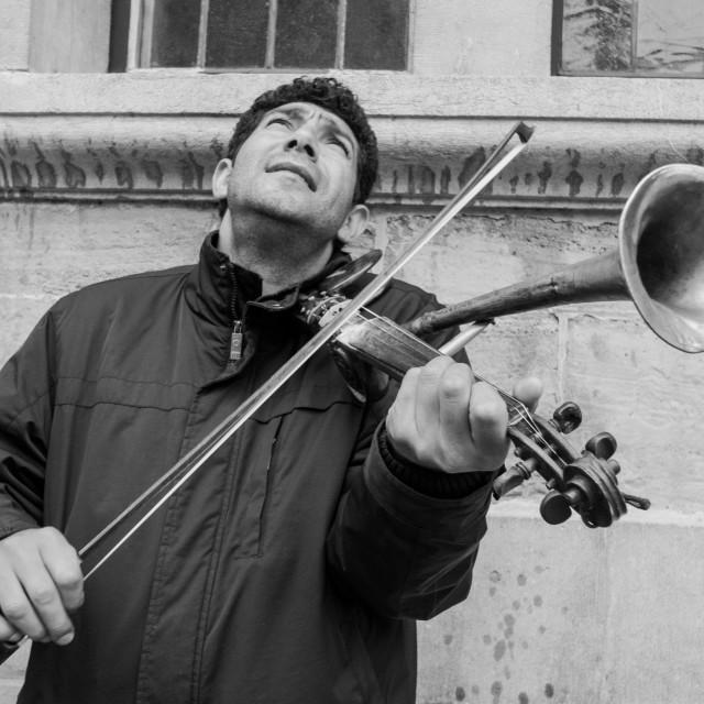 """""""Stroh Violin"""" stock image"""