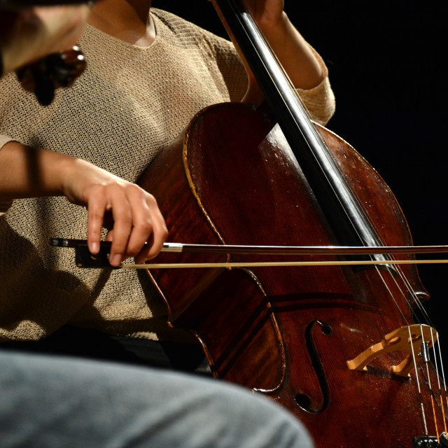 """Classical musician playing the Cello during performance"" stock image"