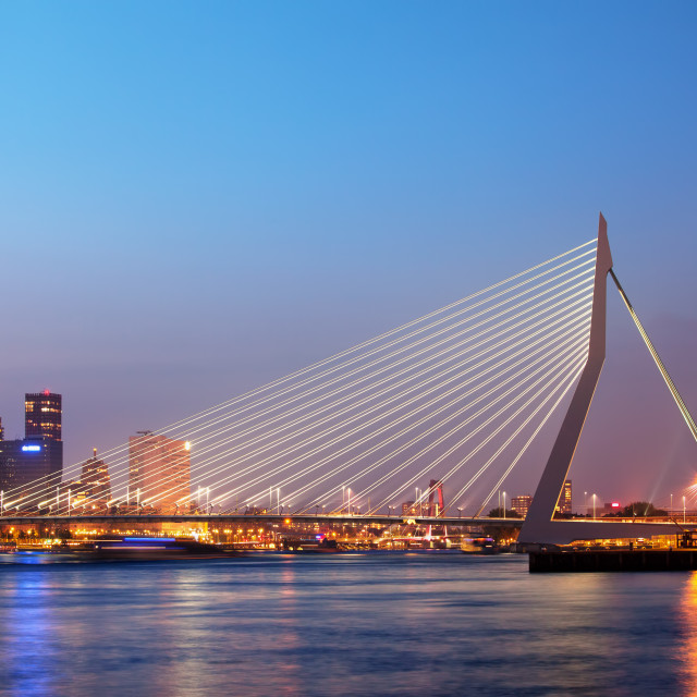 """Erasmus Bridge in Rotterdam at Twilight"" stock image"