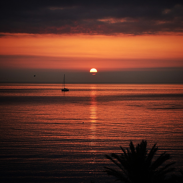 """Sunrise at beach"" stock image"