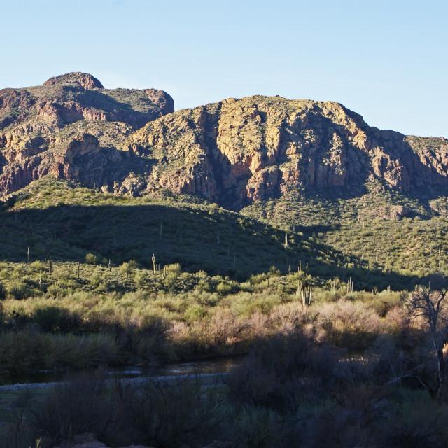 """""""Desert landscape."""" stock image"""