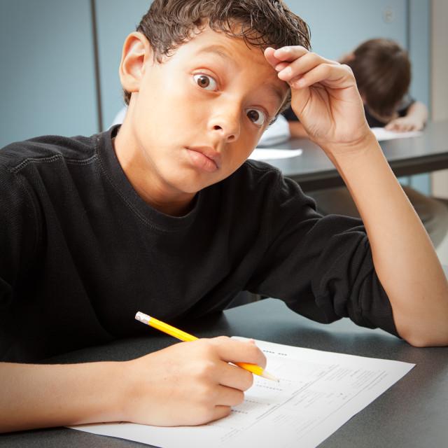 the standardized testing craze