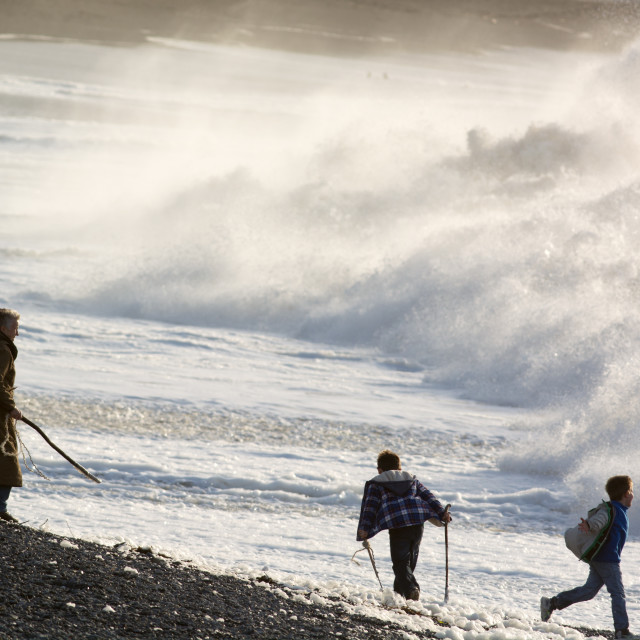 """""""Storm- Playing chicken with the huge waves."""" stock image"""