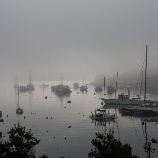 """""""Marsamxett in the mist"""" stock image"""