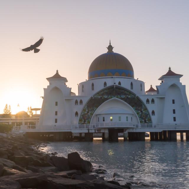 """""""Malacca Straits Floating Mosque During Sunrise"""" stock image"""