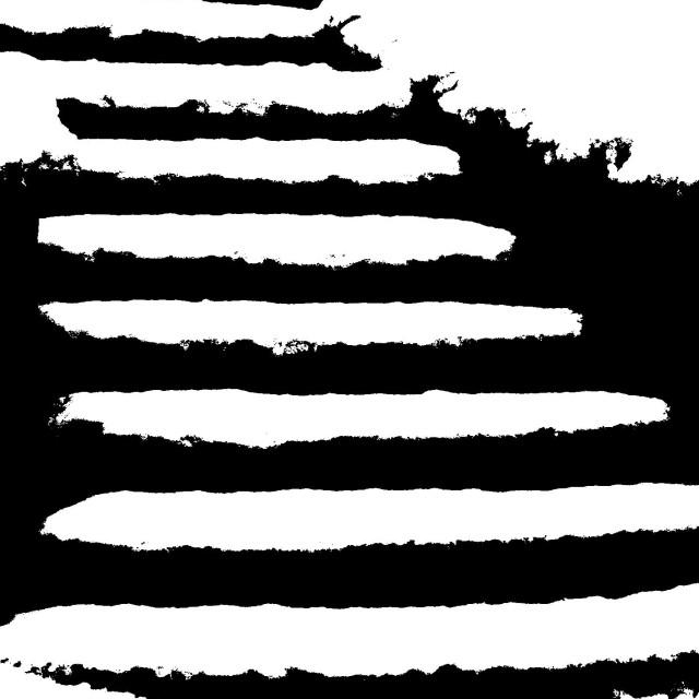 """""""Zebra Steps"""" stock image"""