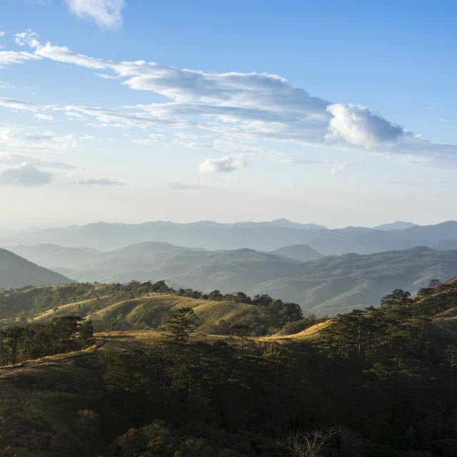 """The trekking road in Lam Dong - Viet Nam"" stock image"
