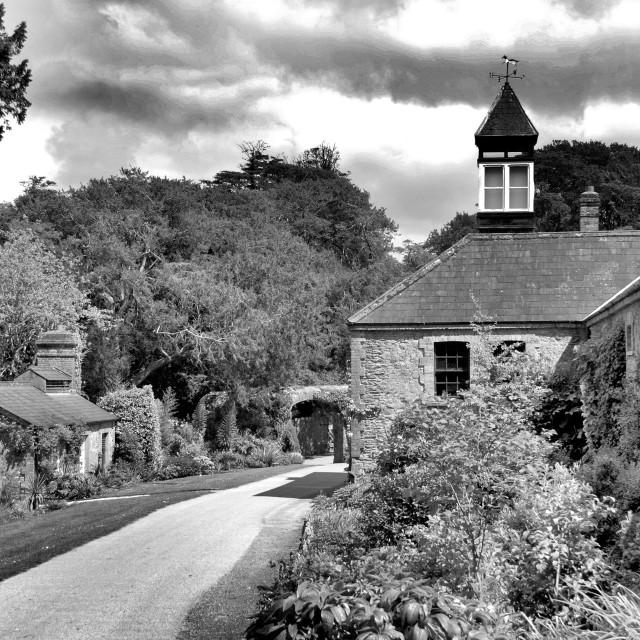"""Blarney Castle Grounds"" stock image"