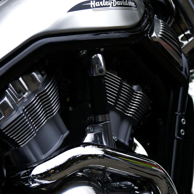 """""""Harley Davidson V-Rod"""" stock image"""