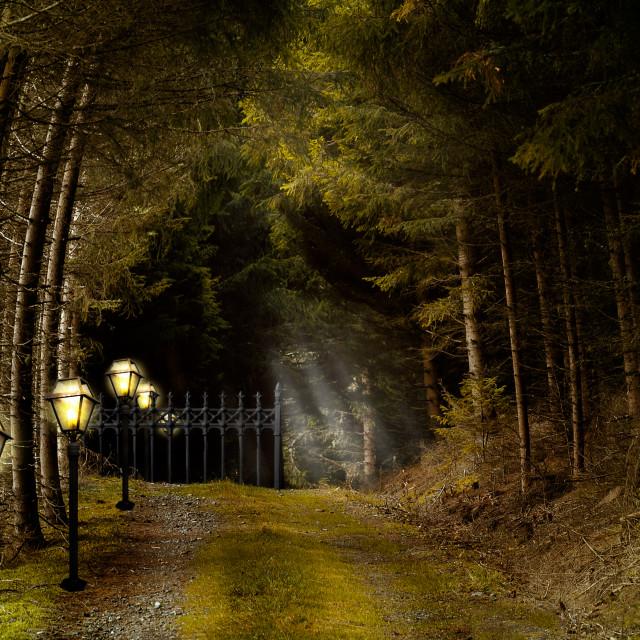 """Fairy gate"" stock image"